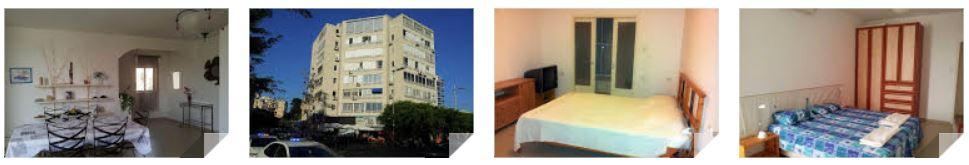Petites Annonces Immobilier Les Appartements En Israel